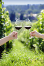 Toasting with two glasses of red wine in the vineyard Royalty Free Stock Image