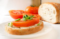 Toasts soft cheese tomato Royalty Free Stock Image