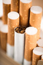 Tobacco in cigarettes with a brown filter close up Royalty Free Stock Photo