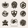 Tobacco leaf label and icons set. Vector Royalty Free Stock Photo
