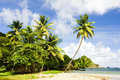 Tobago Royalty Free Stock Photo
