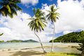 Tobago Royalty Free Stock Photography