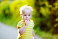 Toddler boy eating piece of bread Royalty Free Stock Photo