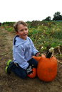 Toddler boy with pumpkins on a farm Royalty Free Stock Images