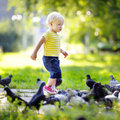 Toddler boy walking in the park Royalty Free Stock Photo