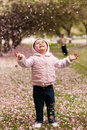 Toddler and cherry blossom