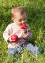 Toddler child sitting grass garden eating fresh apples Royalty Free Stock Images