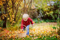 Toddler having fun in autumn park/forest Royalty Free Stock Photo
