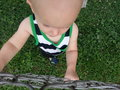 Toddler Looking Through Fence Royalty Free Stock Photo