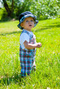 Toddler in a park Royalty Free Stock Photo