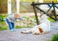 Toddler playing with big dog Royalty Free Stock Photo