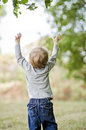 Toddler reaching up Royalty Free Stock Photo