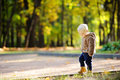 Toddler walking in the park at the autumn Royalty Free Stock Photo
