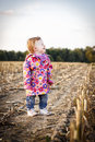 Toddler walking on the stubble field enjoying day autumn atmosphere Royalty Free Stock Photos