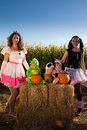 Toddlers in Halloween Costumes Royalty Free Stock Photography
