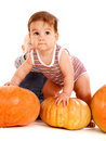 Toddlers playing with pumpkins Stock Images