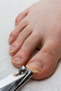 Toenail cutting long being clipped on a make foot with white towel background macro shot Royalty Free Stock Photo