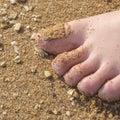 Toes ноги на песке Стоковые Фото