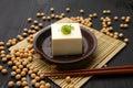 Tofu Royalty Free Stock Photo