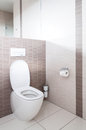 Toilet in a bathroom Royalty Free Stock Photo