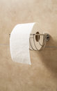 Toilet paper roll in holder Royalty Free Stock Photo