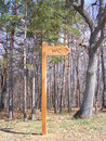 Toilet wc sign in the forest a wooden with an arrow Royalty Free Stock Images
