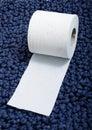 Toiletpaper Royalty Free Stock Photo