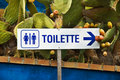 Toilette Stock Image