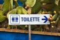 Toilette Royalty Free Stock Photo