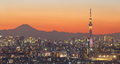 Tokyo city view and tokyo skytree with mt fuji sunset Stock Photo