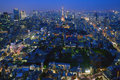 Tokyo at dawn the view of Royalty Free Stock Photography