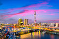 Tokyo, Japan Sumida Skyline Royalty Free Stock Photo