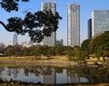 Tokyo landscape, Japan Royalty Free Stock Photo