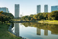 Tokyo november view of tokyo cityscape with park japa photo japan on Stock Photography