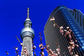 Tokyo Sky Tree tower with cherry blossoms, Japan Stock Photos
