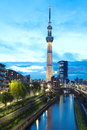 Tokyo sky tree is the world s tallest free standing broadcasting tower it was finally decided on m Royalty Free Stock Image