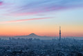 Tokyo Skytree and Mount Fuji Royalty Free Stock Photo