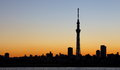 Tokyo skytree with mt fuji city view and sihouette skyline Royalty Free Stock Images