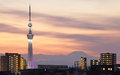 Tokyo skytree with mt fuji city view and sihouette skyline Royalty Free Stock Photo