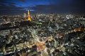 Tokyo tower at night elevated view of downtown Royalty Free Stock Photos