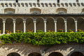 Tolentino - Church of San Nicola, cloister Royalty Free Stock Images