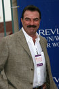 Tom Selleck Obrazy Stock