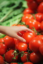 Tomates no mercado Fotografia de Stock