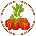 Tomato and basil Royalty Free Stock Images