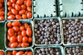 Tomato blue berry fruit for sale Royalty Free Stock Photo