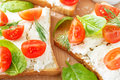 Tomato and cheese bruschetta closeup Royalty Free Stock Photo