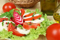 Tomato and cheese salad Royalty Free Stock Photo