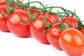 Tomato cherry branch Stock Photo