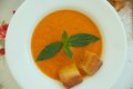 Tomato cream soup light lunch with croutons in white plate on a flower print table cloth Stock Images