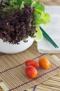 Tomato cucumber vegetable and lettuce salad Royalty Free Stock Photo